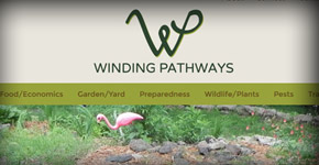 Winding Pathways