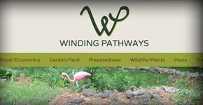 Winding Pathways